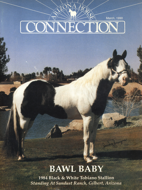 Arizona Horse Connection Cover Bo Insogna