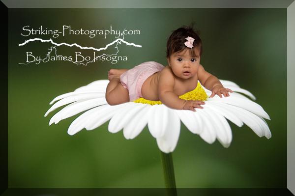 Longmont - Boulder - Baby Photography Portraits